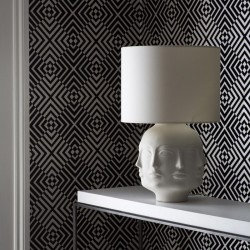 Hypnotist Mono Wallpaper