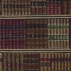 Library Wall Brown Wallpaper