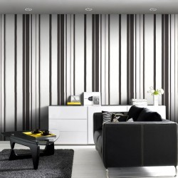 Hoppen Black and White and Silver Striped Wallpaper