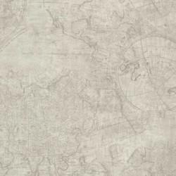 Travel Cartography Dark Beige