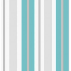 Stripe Sidewall Teal and Silver