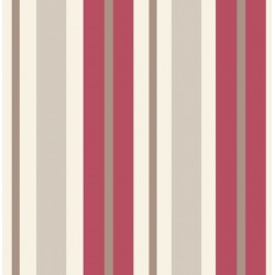 Stripe Sidewall Red and Silver