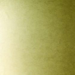 Shimmer Plains Light Gold Wallpaper