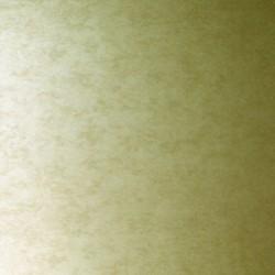 Shimmer Plains Silver Gold Wallpaper