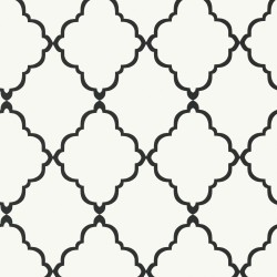 Klein Trellis Black and White