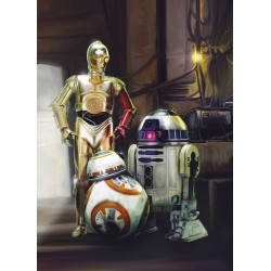 Star Wars Three Droids Mural