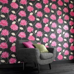 Romance Pink & Black Wallpaper