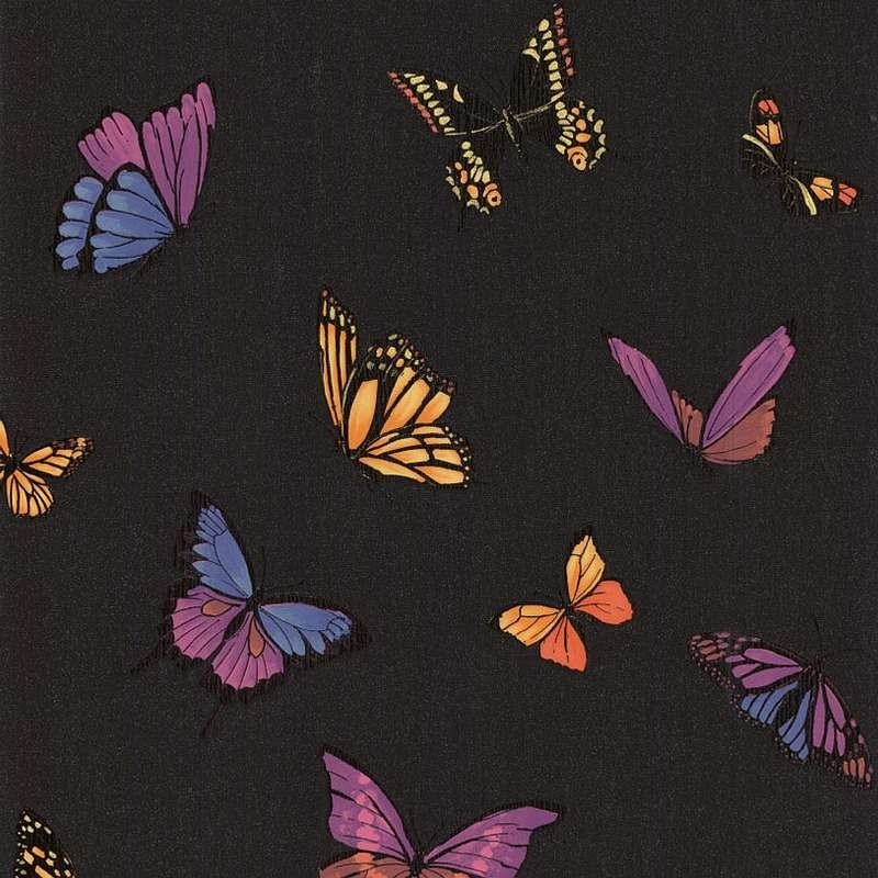 Flutterby butterfly wallpaper black wallpaper julien for Flutterby wallpaper