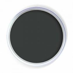 Cat Black Paint