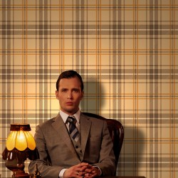 Brodie Brown Flock on Gold Tartan Check