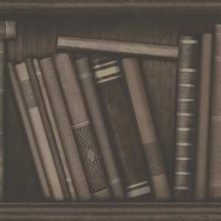 Den Atheneum Sepia Library Bookcase Wallpaper