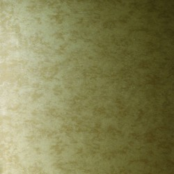 Shimmer Plains Bronze & Silver Wallpaper
