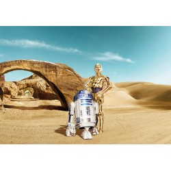 Star Wars Lost Droids Wall Mural