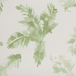Palmeras Watercolour Fresh Green Wallpaper