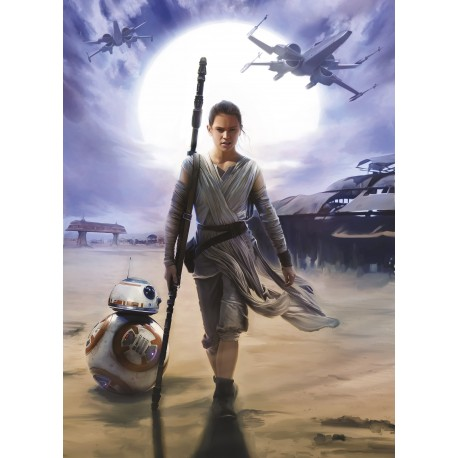Star Wars Rey Wall Mural