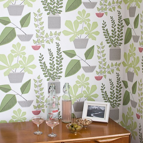 House Plants Olive Green Wallpaper