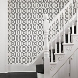 Quantum Black and White Trellis