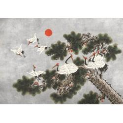 Ukiyo Chia Seed