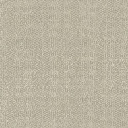 Pazu Semi-Plain Grey