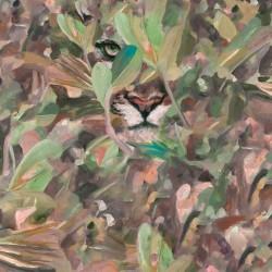 Hidden Puma Autumn