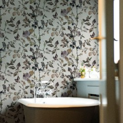 Goldfinch Story Cotton White