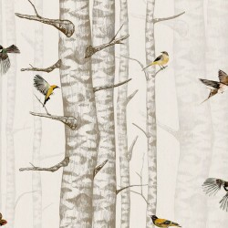 Birch Trees Beige