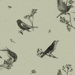 Sweet Birds Black