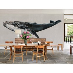 Black Whale Night Wall Mural