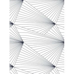 Fan Black & White Wallpaper