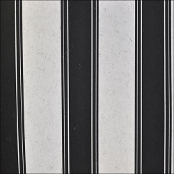 Atenea Black and White Striped