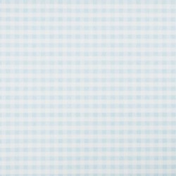 Vichy Gingham Check Blue