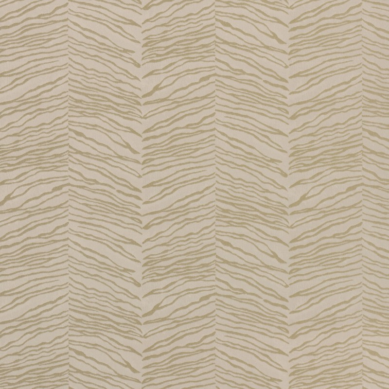Esqueje Zebra Gold And Cream-25405